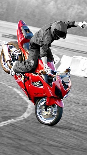 Stunt life