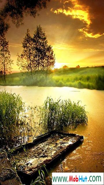 Landscape hd